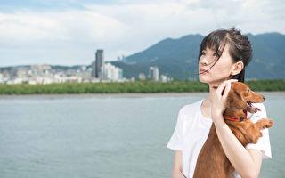 郭美美新歌MV演绎孤单 主角腊肠犬意外落水