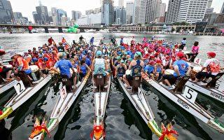 悉尼龙舟竞渡赛为中国新年最大庆典