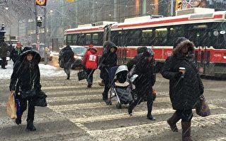 加拿大環境部對多倫多和大多地區發布了特殊天氣聲明。星期五大多地區將有10厘米降雪。多倫多降雪可能為4-6厘米。(Andrew Francis Wallace/Toronto Star via Getty Images)