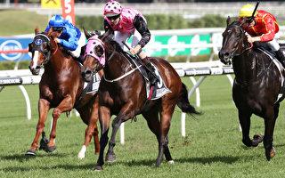 悉尼將辦世界上最昂貴賽馬比賽 獎金1000萬