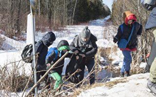 調查:半數魁北克人不歡迎非法入境者