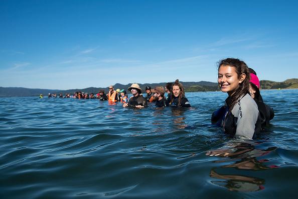 志願者組成一道人牆,阻止鯨魚返回岸邊。(MARTY MELVILLE/AFP/Getty Images)
