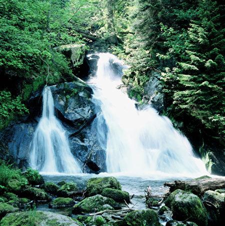 特里贝格瀑布从城头山顶喷涌而下,落差163米的瀑布被长满青苔的岩石分割成了七层。(黑森林旅游局提供)