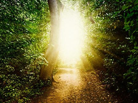 最多的體驗特徵是感受到平靜與安詳(80%的參與者),看到明亮的光(69%)看到靈人(64%)。(fotolia)