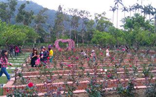 士林官邸玫瑰花展登场 超过1600株