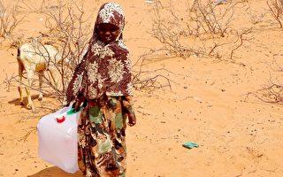 響應飢餓三十 展望會籲投入救援