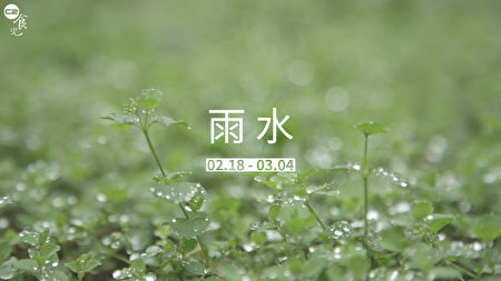 到了「雨水」節氣,空中的水氣增加所以就容易下雨,而雨水的到來正好符合農夫們的春耕播種的需求。(圖:C2食光提供)