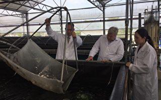 国际邮轮市场夯 高雄农渔产进军全球供应链