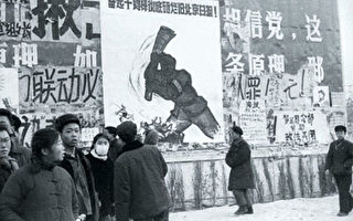 """玉月:""""狄、林反党集团""""背后的黑幕"""