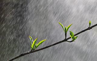 为何下雨后 空气会比较清新?