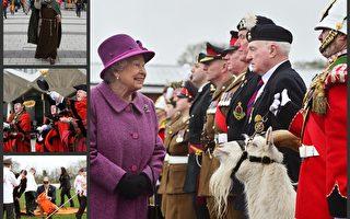 圖說英國:「陛下駕到,山羊有禮了。」(大紀元合成圖)