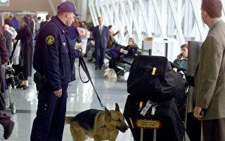 偵測炸彈或恐怖分子 狗狗及機器誰厲害?