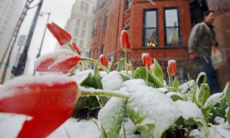 春分,一年中节气循环之首。 (Darren Hauck╱Getty Images)