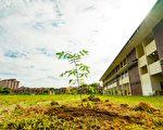 樹苗贈雙溪龍華校 提倡環保 回饋社會