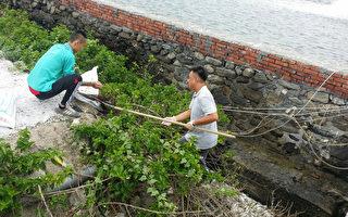 渔塭上万条死鱼排入海  依水污染罚款