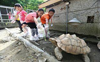 寿山动物园暑假夏令营 一日营队四月提前开跑