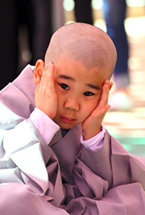 曹溪寺的可愛小和尚。(JUNG YEON-JE/AFP/Getty Images)