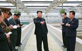 """据报导,朝鲜官员12日告知在平壤的外国记者,要为13日的""""大事""""做准备,但未有说明,引发外界猜测金正恩是否又要发射导弹。不过,现已证实是虚惊一场。(AFP)"""