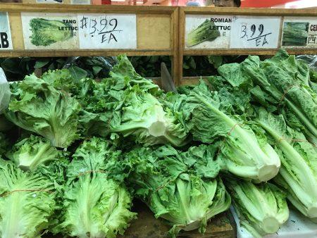 近期生菜价格飙升。