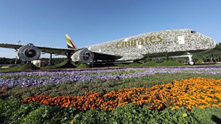 这架A380飞机由超过50万朵花组成。(KARIM SAHIB/AFP/Getty Images)