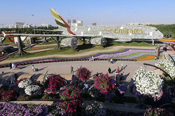 全球最大花园在中东沙漠 想不到吧?