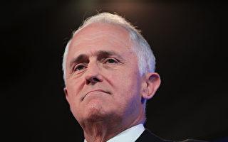 澳洲各界力促特恩布爾儘快與川普會面