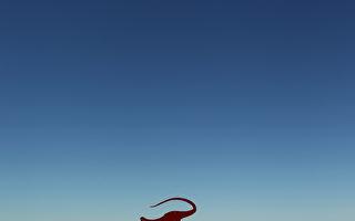 澳洲「侏羅紀公園」面世 露天恐龍展亮相