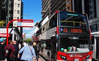 2019年安省阳光名单 渥太华巴士司机人数激增