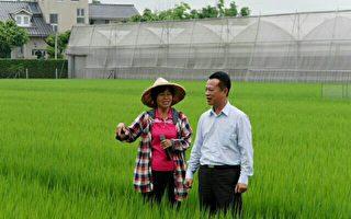 農委會全面啟動有機 友善耕作輔導新措施