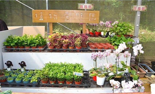 植物展售區。(宋順澈/大紀元)