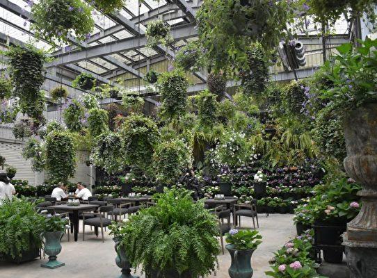 """花了5年多时间打造的""""花鸟园""""景致茂盛。(新竹县政府提供)"""