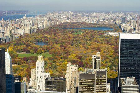 中央公園坐落在曼哈頓島的中央。340公頃的宏大面積使它與自由女神、帝國大廈等一起成為紐約乃至美國的象徵。