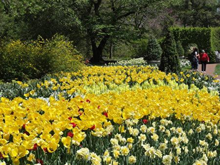 花園步道 (Flower Garden Walk) 一景 (司瑞/大紀元)