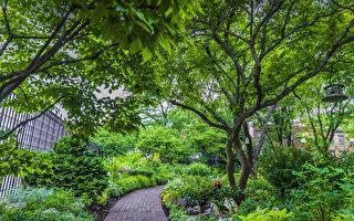 探訪紐約西村秘密花園——傑斐遜市場花園