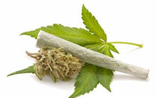 克里斯蒂重申反對大麻合法化