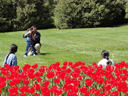 四歲的印度裔小弟弟在爸爸的幫助下給媽媽拍照(司瑞/大紀元)