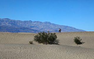 彻底体验高温 游客涌向美国最热的死亡谷