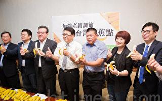 台蕉價暴跌 綠委籲:組國家隊拚外銷