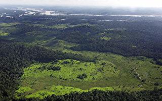 研究:神秘亚马逊雨林是人造 曾有5千万土着人