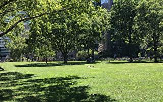 炮台公園內大片的草坪,為人們提供了充裕的休閒場地。(楊帆/大紀元)