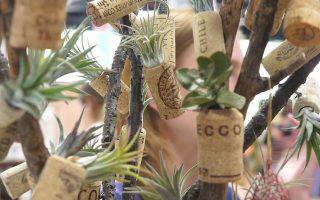 軟木塞變身植物容器 年銷四千個