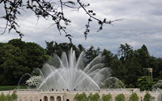 巨資改造 長木花園主噴泉重開