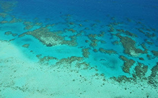 澳洲大堡礁首次被估值 總資產值560億澳元