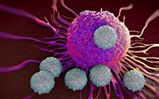 醫學前沿:光指引身體內 「殺手」攻擊癌症