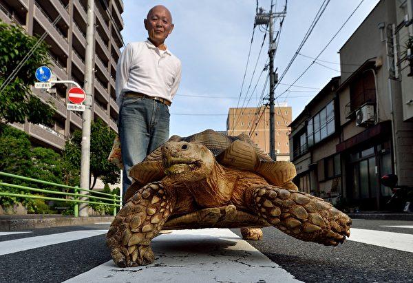 AFP PHOTO / KAZUHIRO NOGI (Photo credit should read KAZUHIRO NOGI/AFP/Getty Images)
