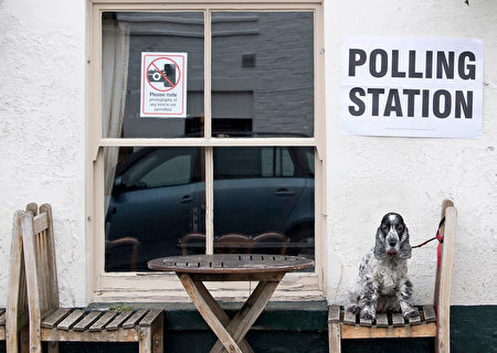 Tilly, a Cocker Spaniel dog, sits on a seat outside the Anglesea Arms pub, set up as a Polling Station, whilst her owner casts their ballot paper, in London on June 8, 2017, as Britain holds a general election. Britain went to the polls on Thursday in a snap election to choose who will lead the country out of the European Union, after a campaign overshadowed by terror attacks. / AFP PHOTO / Justin TALLIS (Photo credit should read JUSTIN TALLIS/AFP/Getty Images)
