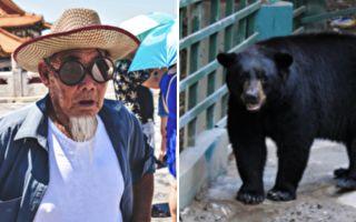 日本85歲老爺爺 為何能擊退黑熊?