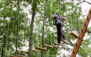 布朗士動物園 新推高空攀爬和滑索項目