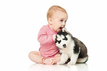 研究发现,孩子一岁内就接触猫、狗,可减少日后发生过敏的可能。(Fotolia)