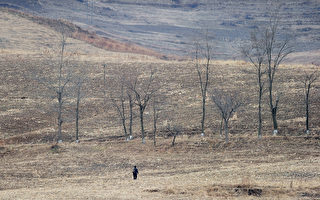 朝鲜突然取消啤酒节 引发外界猜测